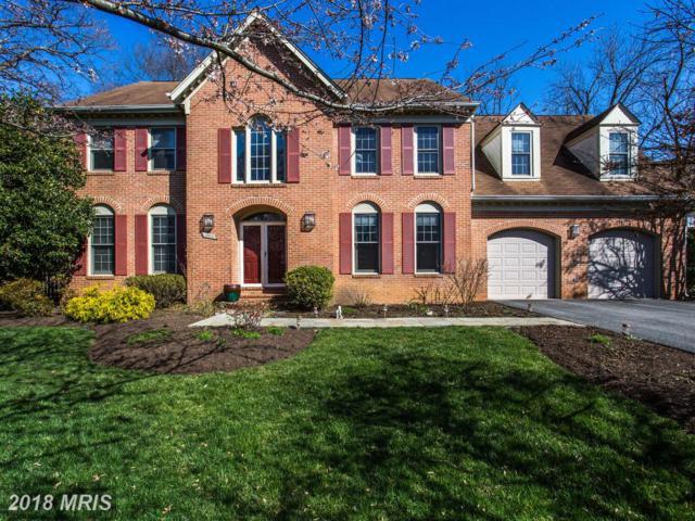 12213 Grove Park Court, Potomac, MD 20854 (#MC10201034) :: The Sky Group
