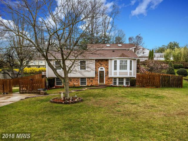 14225 Piccadilly Road, Silver Spring, MD 20906 (#MC10201459) :: The Bob & Ronna Group
