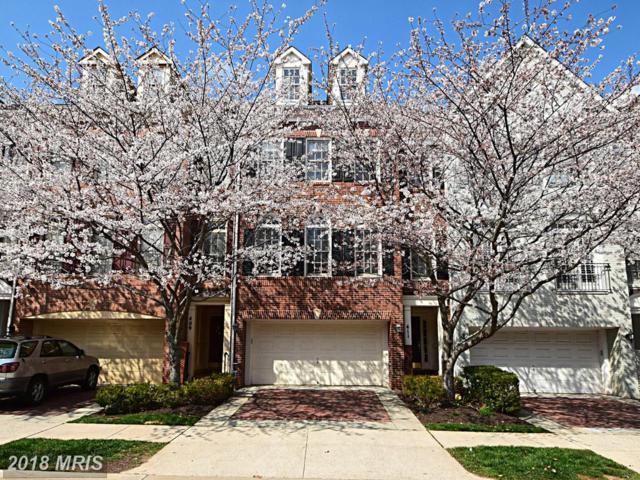 411 Oak Knoll Terrace, Rockville, MD 20850 (#MC10207894) :: Dart Homes