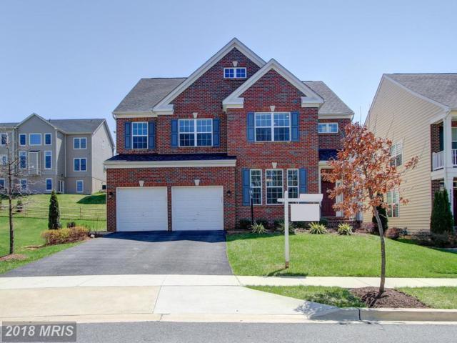 23006 Blue Flag Circle, Clarksburg, MD 20871 (#MC10209315) :: Circadian Realty Group