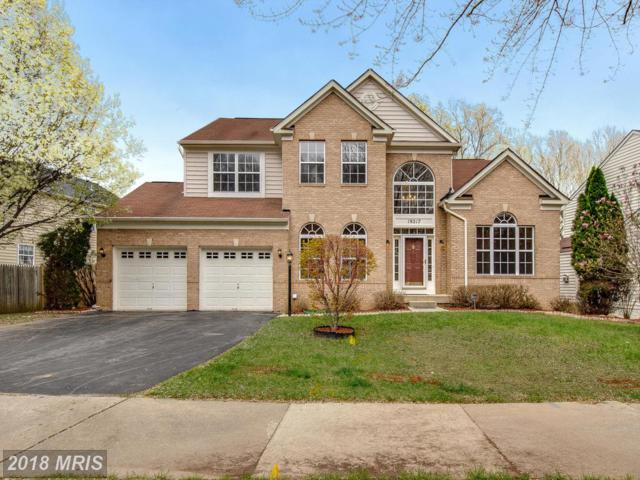 19217 Wheatfield Drive, Germantown, MD 20876 (#MC10209463) :: Dart Homes