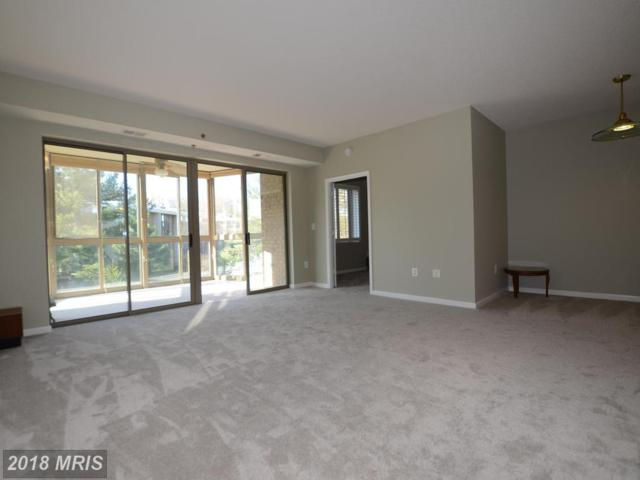 2901 Leisure World Boulevard #304, Silver Spring, MD 20906 (#MC10216249) :: The Sky Group