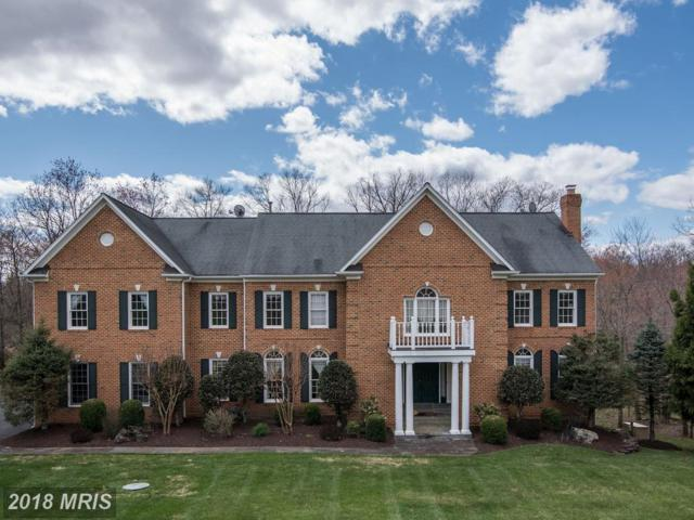 12508 Noble Court, Potomac, MD 20854 (#MC10216424) :: The Sky Group