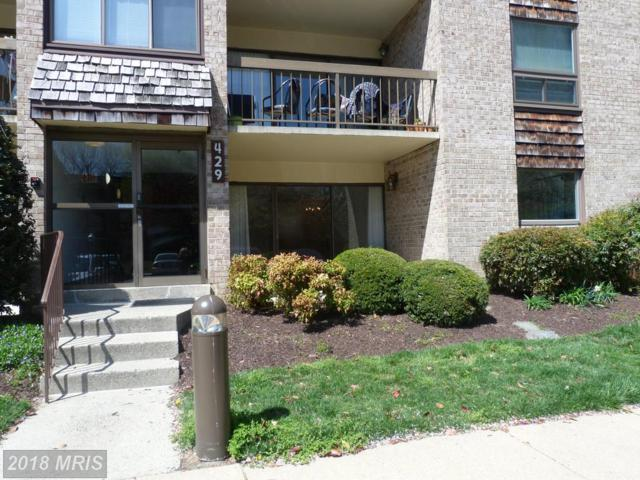 429 Christopher Avenue #56, Gaithersburg, MD 20879 (#MC10216537) :: Dart Homes