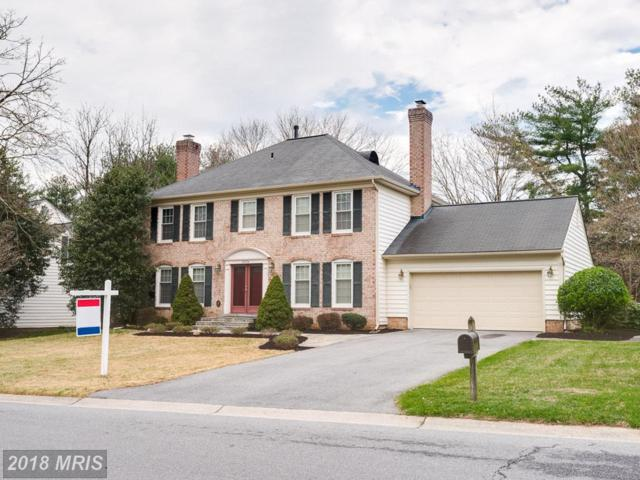 20324 Highland Hall Drive, Montgomery Village, MD 20886 (#MC10217298) :: The Dailey Group