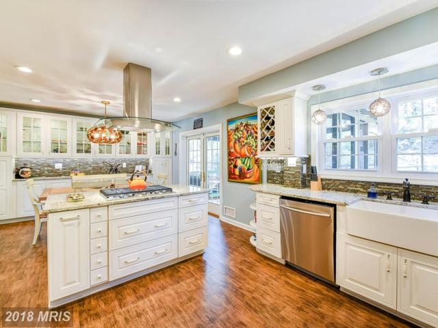 2 David Court, Silver Spring, MD 20904 (#MC10223529) :: Advance Realty Bel Air, Inc