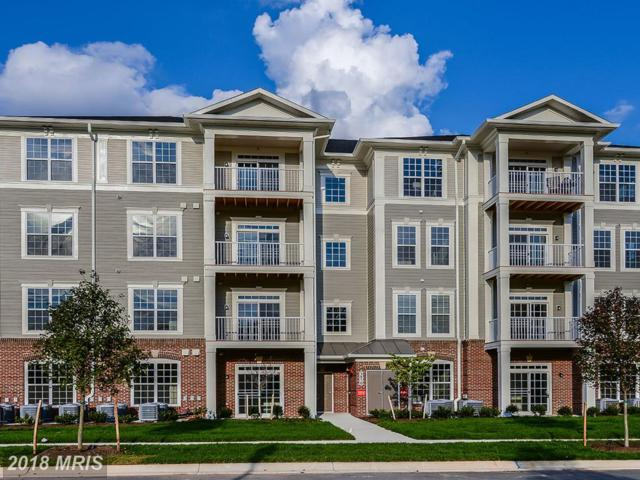 3911 Doc Berlin Drive #24, Silver Spring, MD 20906 (#MC10227590) :: Dart Homes