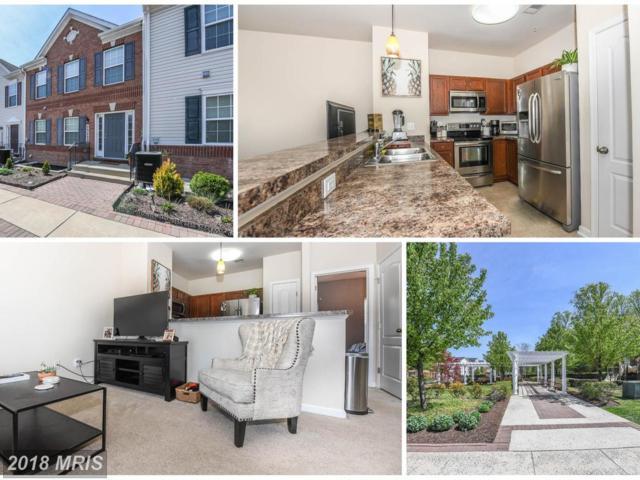 23222 Scholl Manor Way #1130, Clarksburg, MD 20871 (#MC10230035) :: Dart Homes