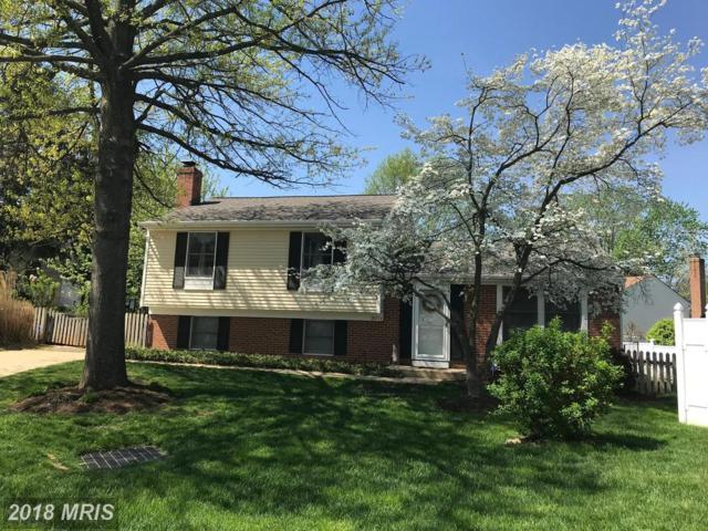 19204 Bonmark Court, Germantown, MD 20874 (#MC10232302) :: The Sebeck Team of RE/MAX Preferred