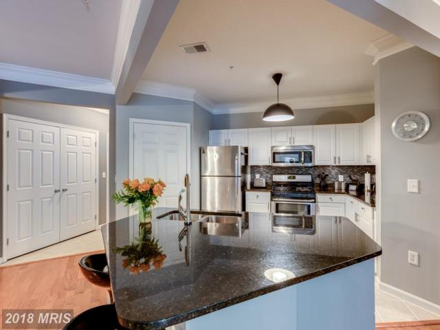 7 Booth Street #103, Gaithersburg, MD 20878 (#MC10236741) :: Dart Homes