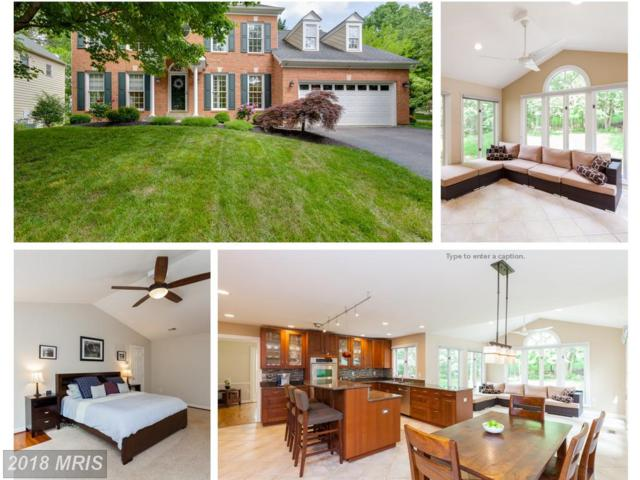 14009 Natia Manor Drive, North Potomac, MD 20878 (#MC10237226) :: The Daniel Register Group