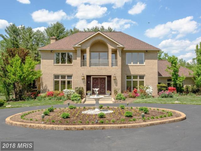 13113 Brushwood Way, Potomac, MD 20854 (#MC10238454) :: The Sebeck Team of RE/MAX Preferred