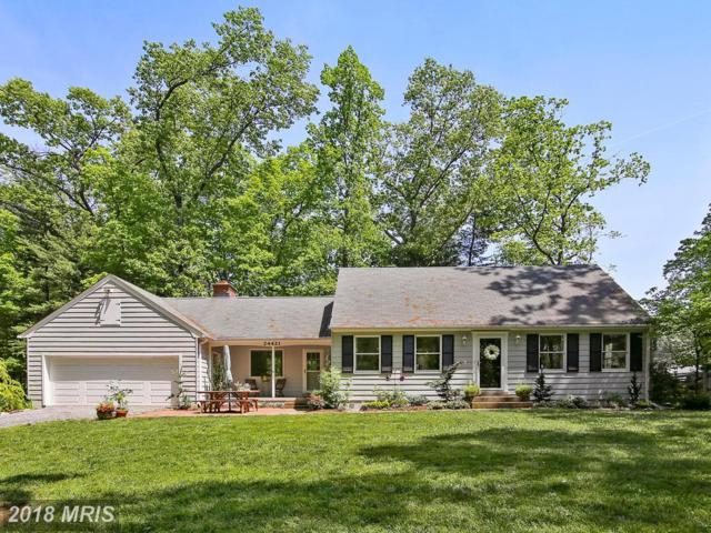 24421 Peach Tree Road, Clarksburg, MD 20871 (#MC10243686) :: Ultimate Selling Team