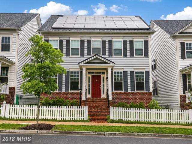 22774 Sweetspire Drive, Clarksburg, MD 20871 (#MC10244310) :: Ultimate Selling Team
