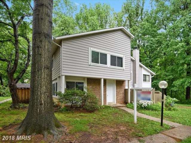 18742 Curry Powder Lane, Germantown, MD 20874 (#MC10244765) :: The Sebeck Team of RE/MAX Preferred