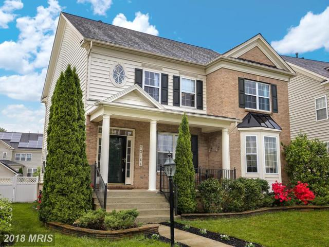 23144 Timber Creek Lane, Clarksburg, MD 20871 (#MC10245849) :: Ultimate Selling Team