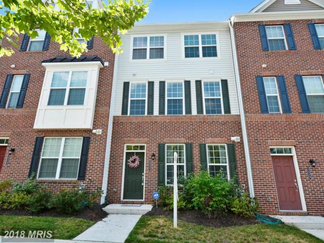 3527 Woodlake Drive #33, Silver Spring, MD 20904 (#MC10246291) :: The Sky Group
