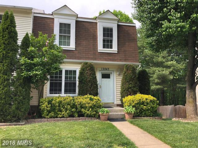 12843 Climbing Ivy Drive, Germantown, MD 20874 (#MC10252265) :: The Maryland Group of Long & Foster