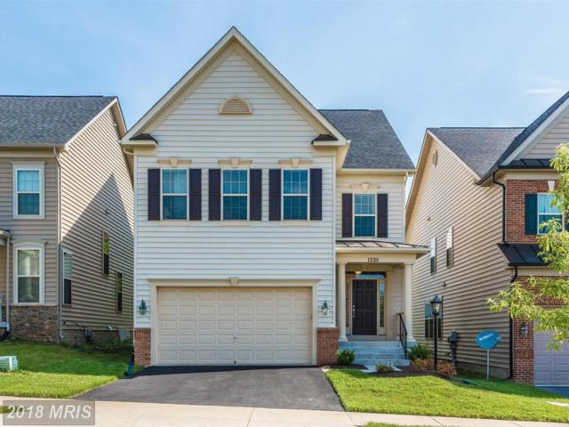 13311 Latrobe Lane, Clarksburg, MD 20871 (#MC10252938) :: TVRG Homes