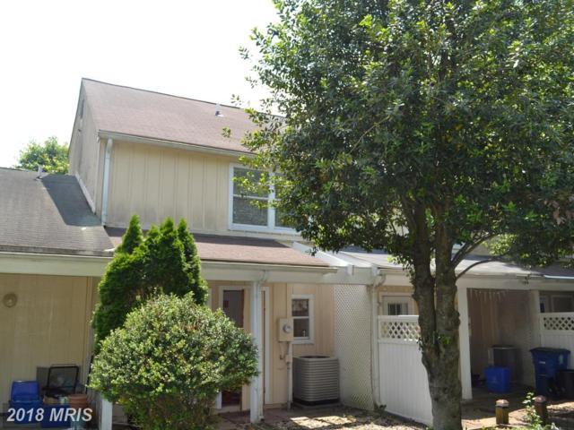 11802 Foal Lane, North Potomac, MD 20878 (#MC10254324) :: Dart Homes