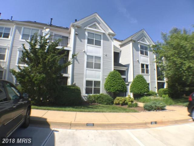 10003 Vanderbilt Circle 1-1, Rockville, MD 20850 (#MC10257925) :: Bob Lucido Team of Keller Williams Integrity