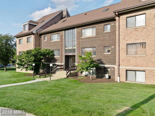 11509 Amherst Avenue #201, Silver Spring, MD 20902 (#MC10259955) :: Charis Realty Group
