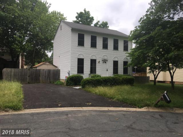 13810 Mustang Hill Lane, North Potomac, MD 20878 (#MC10268235) :: Dart Homes