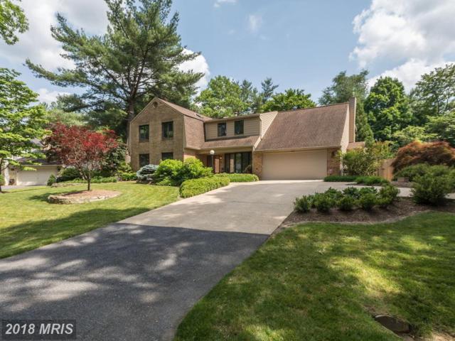 11213 Broad Green Drive, Potomac, MD 20854 (#MC10272358) :: RE/MAX Success