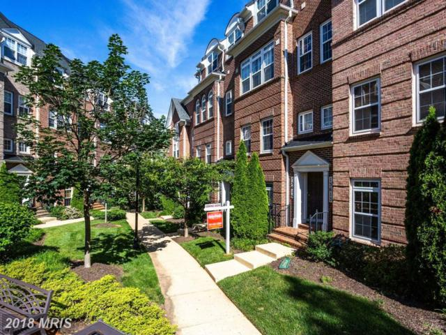 13615 Dover Cliffs Place, Germantown, MD 20874 (#MC10273129) :: ExecuHome Realty
