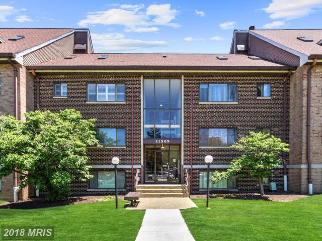 11509 Amherst Avenue #202, Silver Spring, MD 20902 (#MC10274335) :: Charis Realty Group