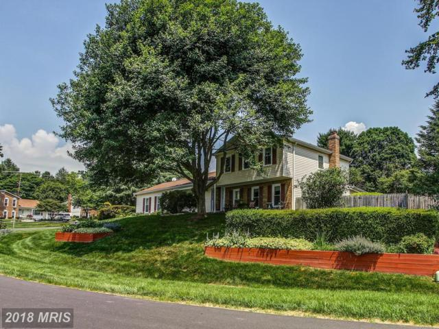 15444 Peach Leaf Drive, Gaithersburg, MD 20878 (#MC10276350) :: RE/MAX Success