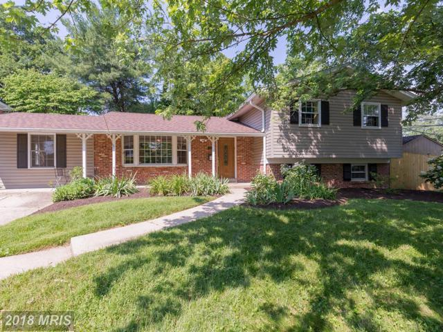 11634 Deborah Drive, Potomac, MD 20854 (#MC10276601) :: Circadian Realty Group