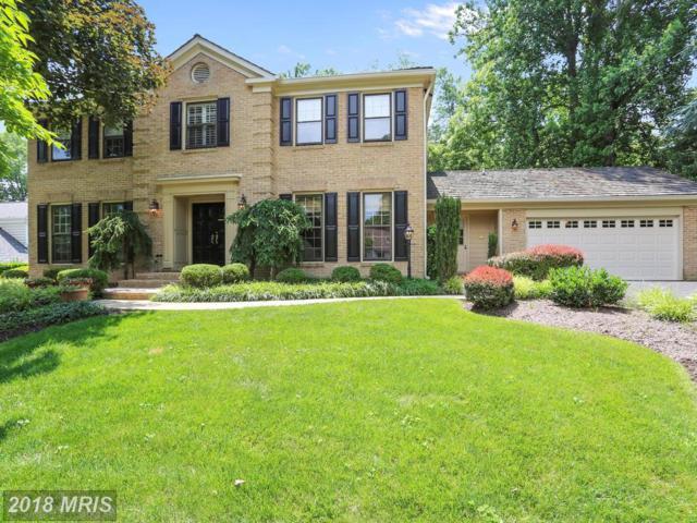 14 Mercy Court, Potomac, MD 20854 (#MC10276792) :: Dart Homes