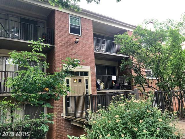 880 College Parkway #304, Rockville, MD 20850 (#MC10277013) :: RE/MAX Success