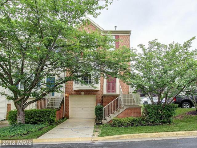 1 Rosebay Court, Germantown, MD 20874 (#MC10277562) :: RE/MAX Success