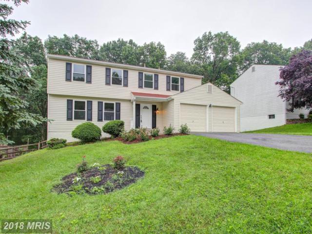 10021 Durango Drive, Damascus, MD 20872 (#MC10277702) :: Jim Bass Group of Real Estate Teams, LLC