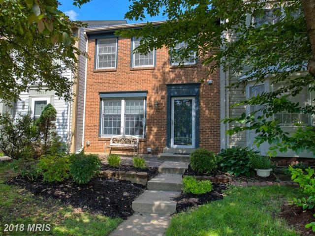 18814 Sky Blue Circle, Germantown, MD 20874 (#MC10277785) :: Dart Homes