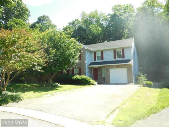 19617 Stewartown Terrace, Montgomery Village, MD 20886 (#MC10278990) :: Dart Homes