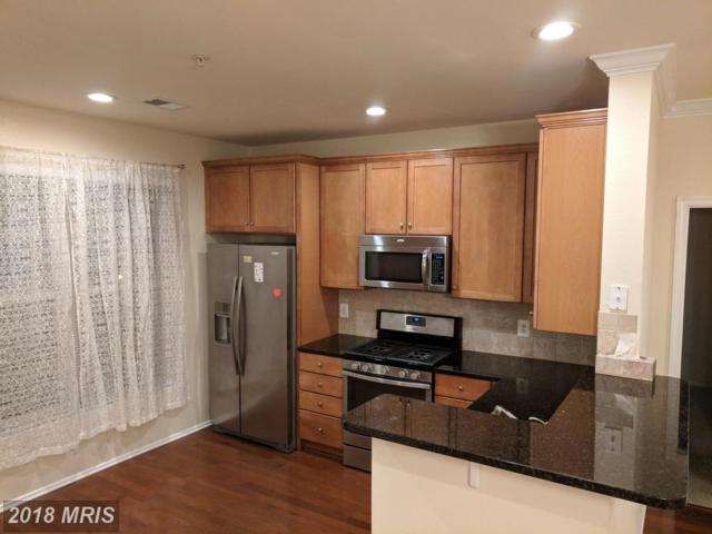 11800 Old Georgetown Road #1205, North Bethesda, MD 20852 (#MC10284567) :: The Daniel Register Group