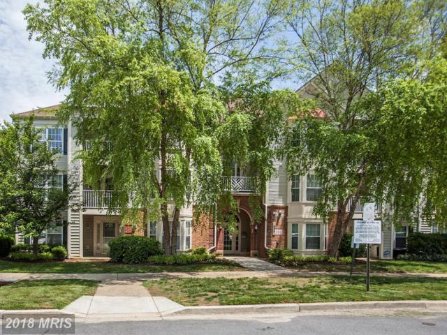 18801 Sparkling Water Drive 8-301, Germantown, MD 20874 (#MC10290704) :: Provident Real Estate