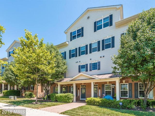 23215 Observation Drive #3273, Clarksburg, MD 20871 (#MC10291832) :: Pearson Smith Realty