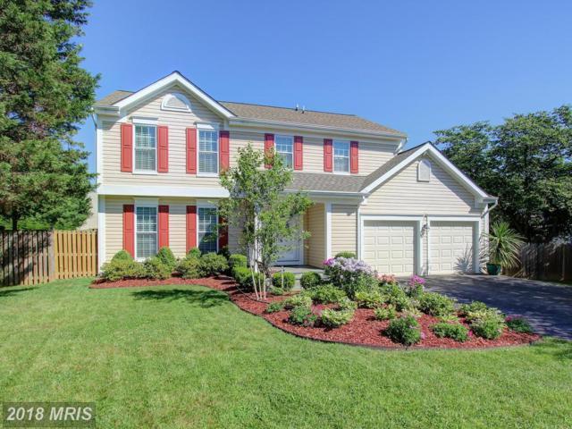 20912 Theseus Terrace, Germantown, MD 20876 (#MC10295061) :: Jim Bass Group of Real Estate Teams, LLC