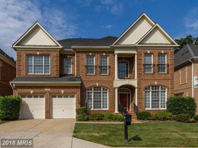 11416 Patriot Lane, Potomac, MD 20854 (#MC10296154) :: Dart Homes