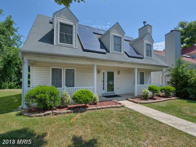 20431 Bloomingville Court, Germantown, MD 20876 (#MC10296636) :: Dart Homes