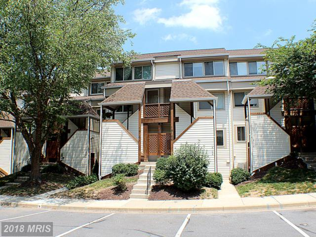 18166 Windsor Hill Road 207B, Olney, MD 20832 (#MC10300044) :: The Withrow Group at Long & Foster