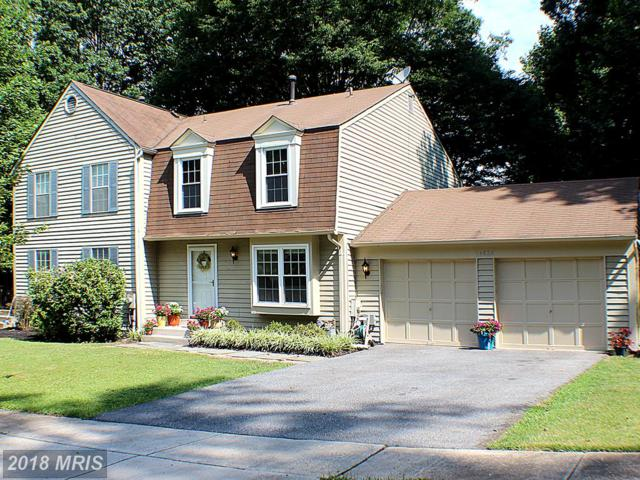 14626 Sandy Ridge Road, Silver Spring, MD 20905 (#MC10300620) :: The Speicher Group of Long & Foster Real Estate