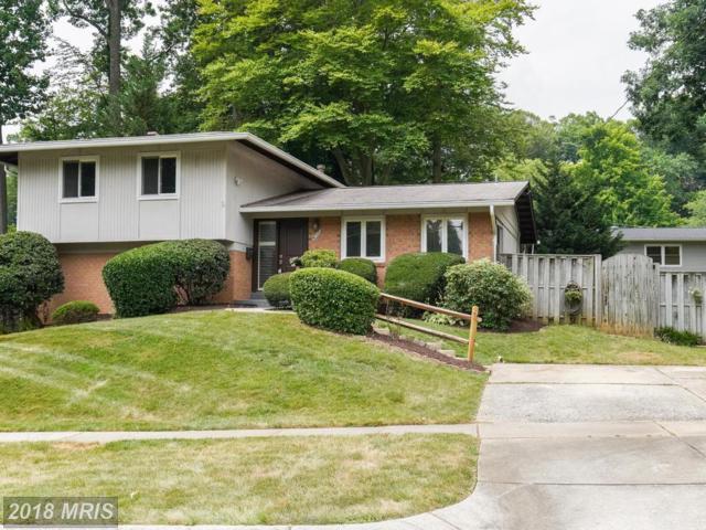 4712 Levada Terrace, Rockville, MD 20853 (#MC10302468) :: The Katie Nicholson Team