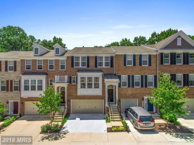15605 Quince Trace Terrace, North Potomac, MD 20878 (#MC10304085) :: The Withrow Group at Long & Foster