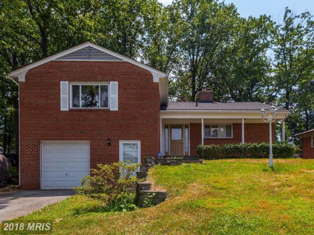 10220 Green Forest Drive, Silver Spring, MD 20903 (#MC10304458) :: The Sebeck Team of RE/MAX Preferred