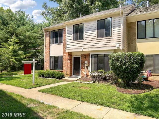 10846 Whiterim Drive, Potomac, MD 20854 (#MC10312752) :: The Sky Group